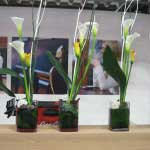 Blumen_Kuhn_Floraldesign_Messe_Counter-Bar_Galerie27
