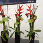 Blumen_Kuhn_Floraldesign_Messe_Counter-Bar_Galerie6