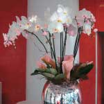 Blumen_Kuhn_Floraldesign_Messe_Counter-Bar_Galerie7